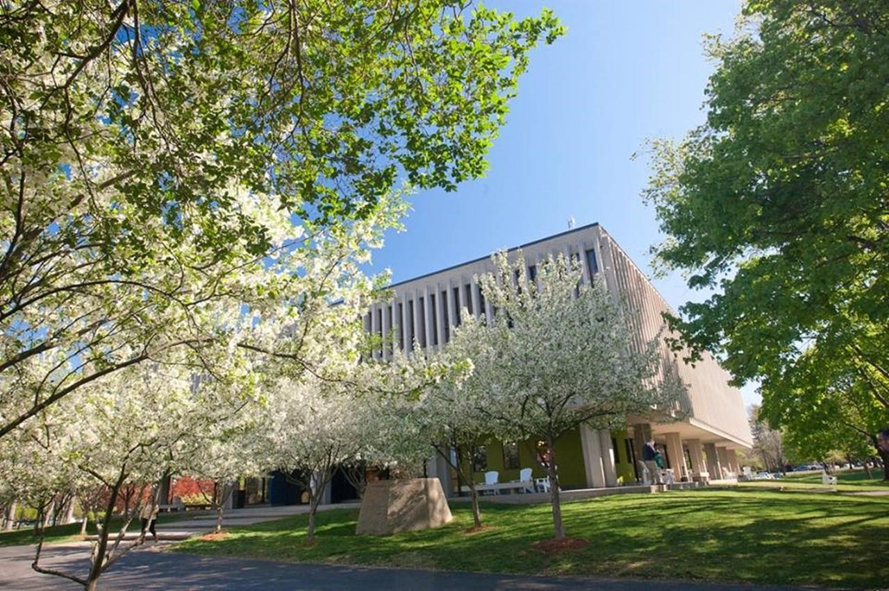 Khu học xá của Study group nằm ngay trong khuôn viên các trường