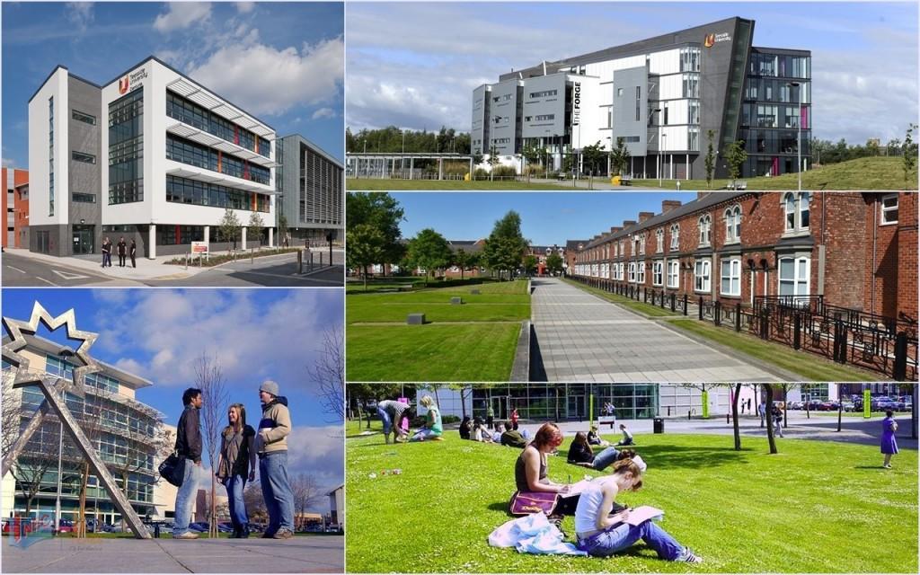 Trường mang đến 5 phân khoa chính với nhiều chuyên ngành hấp dẫn